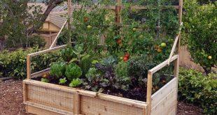 6 Fuß x 3 Fuß Cedar Raised Garden Bed