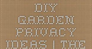 DIY Outdoor-Bildschirme und Backyard Privacy Ideas