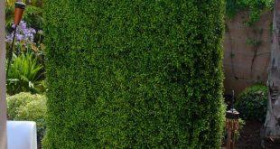 30+ Schöne Ideen für Gartengestaltung und Landschaft