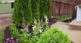 70 Ideen Landschaftsideen für Hinterhof Blumen Pflanzen #Pflanzen #Blumen #Hinterhof ...