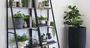 8 Pflanzenteile im Wohnzimmer, die Sie weniger traurig machen, wenn der Sommer zu Ende geht