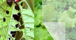 Agfabric 4'x100 'Käfernetz Insektennetz, Gartennetz Pflanzen schützen Früchte Blumen gegen Insekten, Vögel und Eichhörnchen