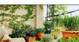 Beste Patio Pergola Decor Gardens 50+ Ideen