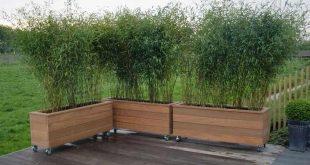 Bild Betonfliesen Terrasse mit Bambus Google Search