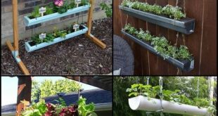 DIY hängender Gossen-Garten