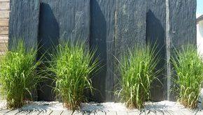Diese mit grafischen Gräsern bedeckten Schieferplatten bilden eine natürliche und ...