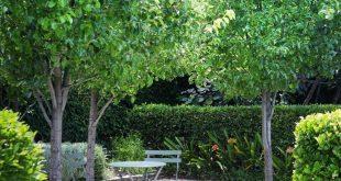 Dieser Vorgarten in Adelaide erhielt nach einigen gut platzierten ... - #Adelaid ...