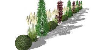 Siebkombination aus Säulenbäumen, Heckenelementen, Gräsern und Bücherbällen