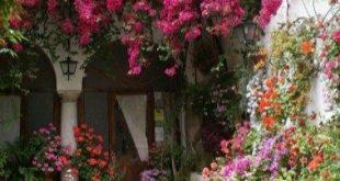 Terrassen-Ideen eines gemütliche Hinterhof-Frankreichs 07