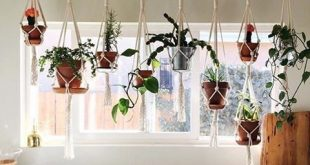 Wohnzimmer Inspiration Hängepflanzen - 35 Kreative Hängepflanzenprojekte für den skandinavischen Stil