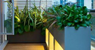 maßgeschneiderte Pflanzgefäße auf der Dachterrasse mit Sichtschutz