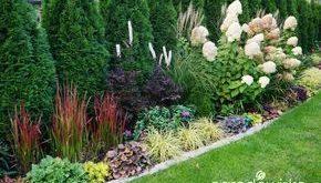 11+ erstaunliche Gartenpläne Videos Ideen