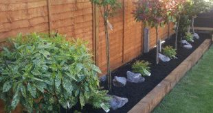 Backyard Landscaping Ideas - Der perfekte südländische Garten beginnt mit einer Sensation