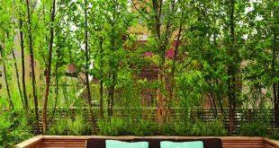 Dachterrasse mit Grünpflanzen als Leinwand - #als # Dachterrasse #grunpflanzen #leinwand #mit