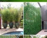 Trendy Gartenterrasse Pflanzen Sichtschutz Ideen