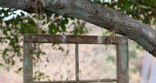 altes Fenster hing an einem Gartenbaum