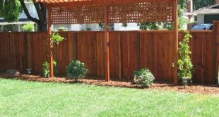 #backyard #lattice #further #privacy #trellis #close